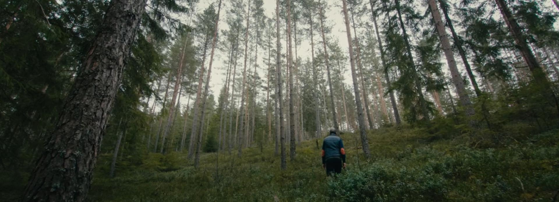Mann in Wald